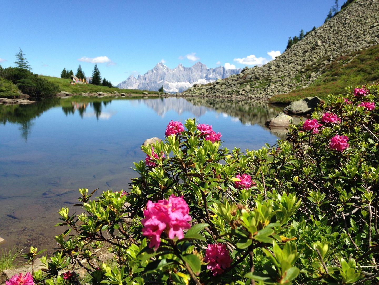 Eine der Sommerattraktionen der Reiteralm ist der Spiegelsee.