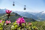 Die besten österreichischen Sommer-Bergbahnen erwarten ihre Urlaubsgäste mit einem abwechslungsreichen Bergerlebnis